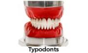 Typodonts - Simulação ortodôntica perfeita